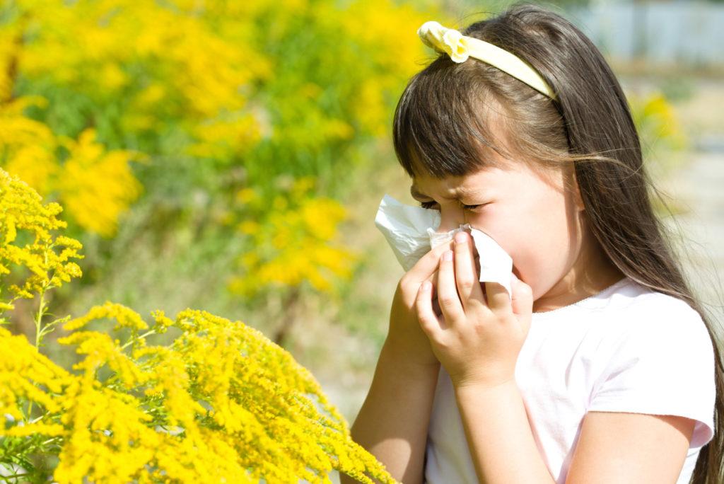 โรคภูมิแพ้ จากเกสรดอกไม้