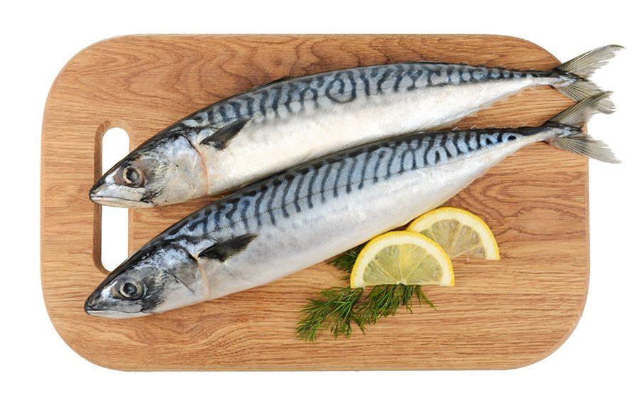 ปลาซาบะ